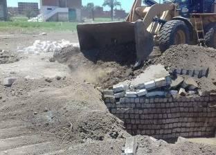 رفع المخلفات بقرية الناصرية بمركز ديرمواس في المنيا
