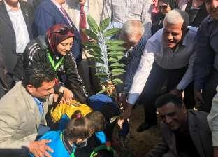 برعاية السيسي.. تدشين حملة لزراعة مليون شجرة مثمرة بالمنوفية