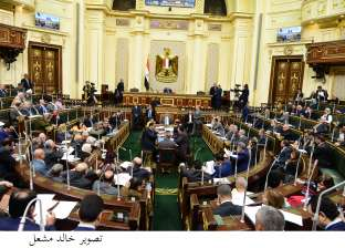 """نائب: بعض يساريي البرلمان طالبوا بزيادة رسوم تراخيص """"وحدات الطعام"""""""