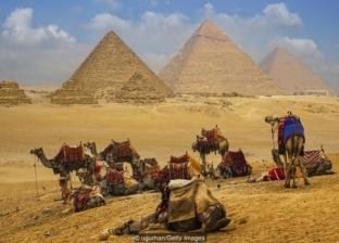 وزيرة التعاون ترد على مزاعم إيلون ماسك عن بناة الأهرامات: ننتظرك بمصر