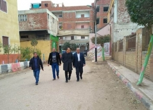بسبب أعمدة الإنارة.. محافظ الشرقية يُقيل رئيس الوحدة بالبلاشون