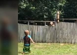بالفيديو| طفل يلهو مع كلب جارته بشكل ظريف يحقق ملايين المشاهدات