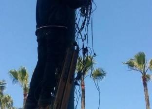 حملة لصيانة أعمدة الكهرباء بوسط الإسكندرية