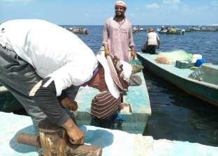 عودة الصيد ببحيرة البردويل تجبر تجار الأسماك على خفض الأسعار في العريش