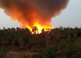 4 طائرات هليكوبتر و30 سيارة إطفاء من المحافظات لإخماد حريق الراشدة