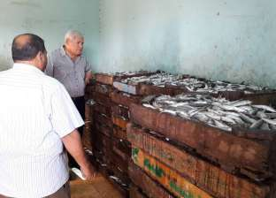 """""""شعبة الأسماك بدمياط"""": ارتفاع الأسعار بنسبة 20% بسبب شم النسيم"""