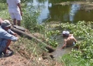 غرق شاب وحصانه أثناء الاستحمام في النيل بكفر طحلة في القليوبية