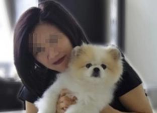 وفاة أول كلب في العالم بسبب فيروس كورونا