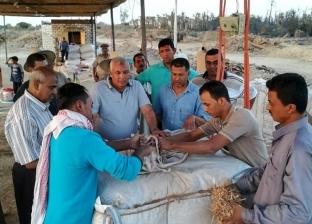 محافظ الوادي الجديد يتفقد مشروع شبابي لفرم المخلفات الزراعية بالراشدة
