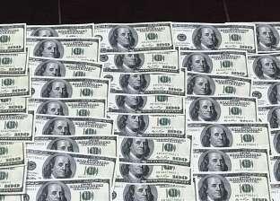 """عملة """"الرابيل"""" ترتفع لمستوى قياسي بمكاسب 7000% منذ بداية العام"""