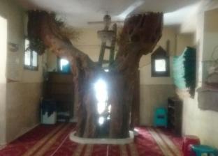 """""""شجرة"""" تهدد الصلوات.. مسجد الرحمن في الريحاني آيل للسقوط"""