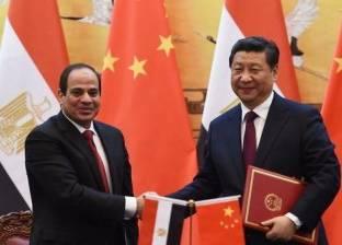 حماة الوطن: استقبال المصريين للرئيس في سول رسالة للعالم