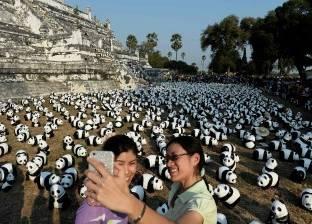 """بالصور  """"العالمي للطبيعة"""" يطلق حملة للتوعية بالحيوانات المهددة بالانقراض"""
