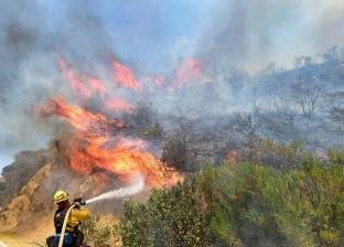 رجال الإطفاء يكافحون لاحتواء حرائق غابات في نيوزيلندا منتشرة في أكثر من 4 آلاف فدان