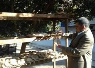 تحرير 21 محضر تموين مخالف بديرمواس بالمنيا