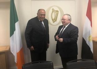 شكري يلتقي رئيس البرلمان الأيرلندي لبحث سبل تعزيز العلاقات