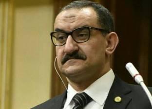 برلماني: مصر تتعرض لحرب من المنظمات الحقوقية لنشر الفوضى