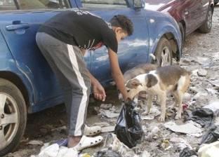 «عمر» يعمل ليشترى الطعام للكلاب الضالة: العشق المجنون