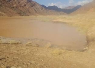 """استمرار غلق طريق """"فيران – كاترين"""" بجنوب سيناء لكثرة الإطماءات"""