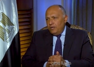 مصر تدين الهجوم الإرهابي على حافلة تقل جنود كينيين