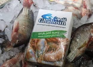 """محافظة كفر الشيخ تعلن أسماء وأماكن 11 منفذا لبيع أسماك """"غليون"""""""