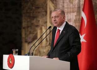 خبير: أردوغان يحتل سوريا منذ 2011 تحت مزاعم الثورة والديموقراطية