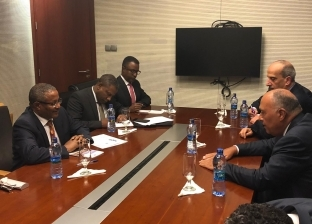 سامح شكري يبحث مع نظيره الإثيوبي مفاوضات سد النهضة
