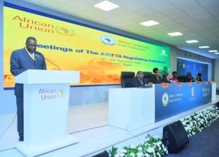 """""""الأفارقة"""" يشكرون الحكومة المصرية في اجتماع وزراء التجارة"""