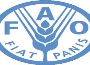 """مصر تدعو لتعزيز المبادرات الإقليمية لـ""""فاو"""" لتنفيذ أهداف التنمية"""