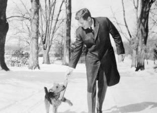 """""""أحدهم منع حربا نووية"""".. كلاب أثرت في تاريخ البشرية"""