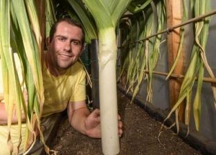 بالفيديو| مزارع يبتكر طريقة جديدة لنمو الخضروات