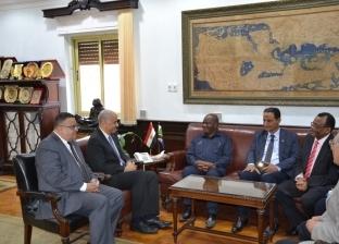 الكردي يبحث تطوير التعاون التعليمي مع رئيس البرلمان التنزاني