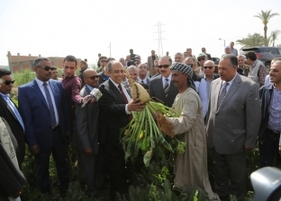 وزير الزراعة: مد مشروع الإنتاج الحيواني بأسيوط بسلالات جديدة لتنميتها