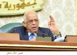 """عبدالعال: لا يوجد """"أموال أجنبية"""" على أرض سيناء"""