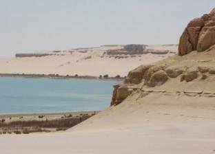 نائب وزير الزراعة: افتتاح بحيرة قارون خلال العيد القومي لمحافظة الفيوم