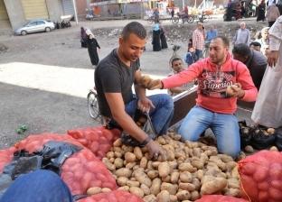 البطاطس تستقر في أسواق الجملة.. والطماطم بـ9.5 جنيه