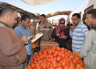 تموين جنوب سيناء: تحرير 42 محضر مخالفات تموينية بمدن خليج السويس
