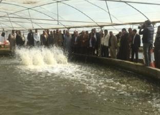 الزراعة: استغلال محطة أبوشنب في الفيوم لإنتاج 35 طنًا من أسماك البلطي