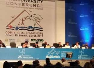 """مسؤولة أممية بـ""""التنوع البيولوجي"""": تدهور 65% من أراضي أفريقيا الزراعية"""