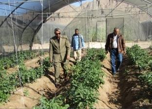 بالصور| رئيس مدينة أبورديس يتفقد قرية فيران