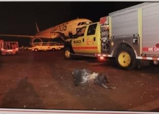 مصر تُدين حادث استهداف مطار أبها السعودي