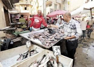 ارتفاع أسعار الأسماك في سوق العبور.. والبلطي بـ24.5 جنيه للكيلوجرام