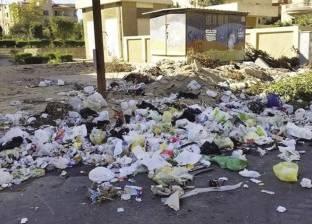 الزبالة فى شارع «رئيس الحى»: «باب النجار مخلّع»
