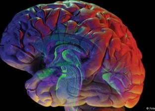 علماء يابانيون يكتشفون آلية لوقف نزيف الدماغ الخطير