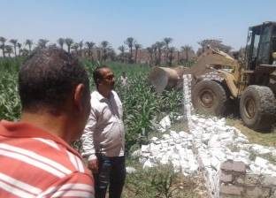 إزالة 3 حالات تعد على أراض زراعية بمركز أبوتيج في أسيوط