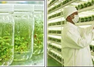 """""""العربية للتقانة الحيوية"""" تنظم ورشة عمل عن التكنولوجيا الحيوية"""