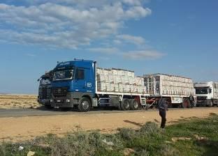 153 شاحنة بضائع مصرية تعبر منفذ السلوم إلى ليبيا
