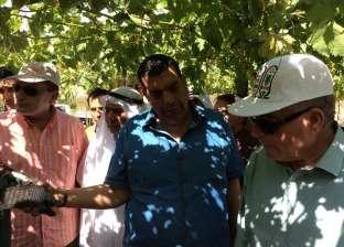 وزير الزراعة عن الأراضي المستصلحة: لم أتوقع رؤية هذه المساحات الخضراء