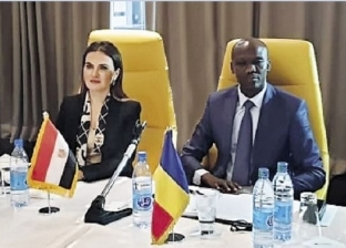 وزيران تشاديان لـ«وفد مصرى»: «السيسى» يقود أفريقيا للتنمية
