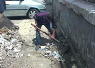 نشاط مكثف لحملات الصيانة والنظافة والتجميل في أحياء بورسعيد